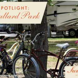 Point Mallard Park