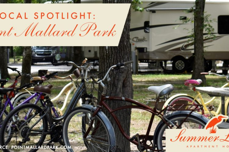 Local Spotlight: Point Mallard Park