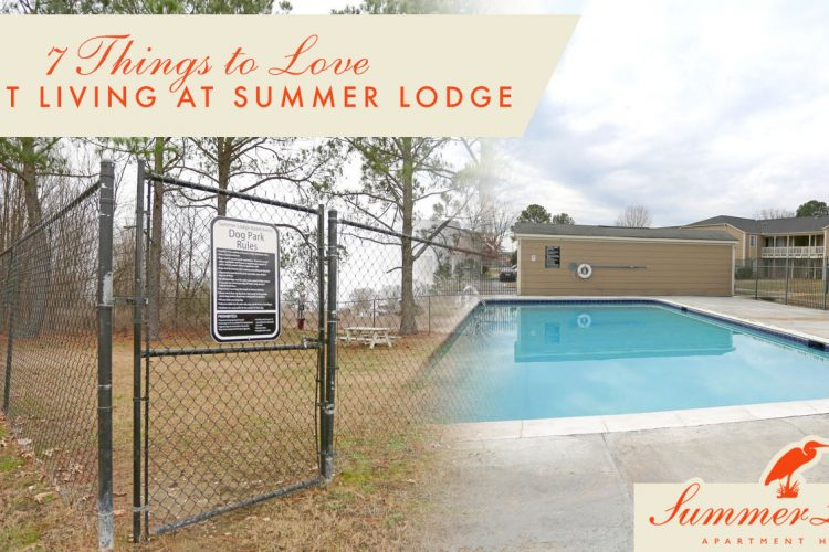 7 Things to Love About Living at Summer Lodge