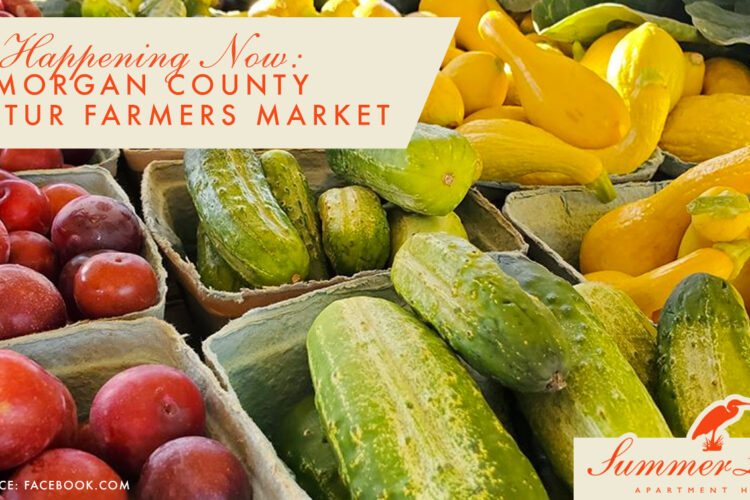 Happening Now: Morgan County Decatur Farmers Market