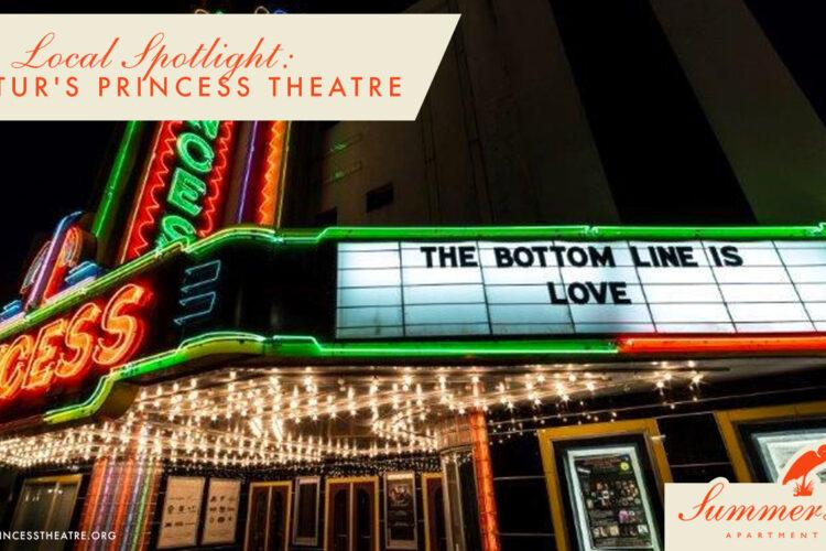 Local Spotlight: Decatur's Princess Theatre